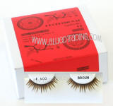 Wholesale brown eyelash extensions, Beautiful wholesale brown eyelash extension, Human hair. Wholesale distributor, Allied Trading, Los Angeles, CA 90057