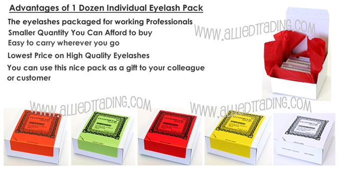 Cheap high quality individual eyelashes, 2 dozen pack